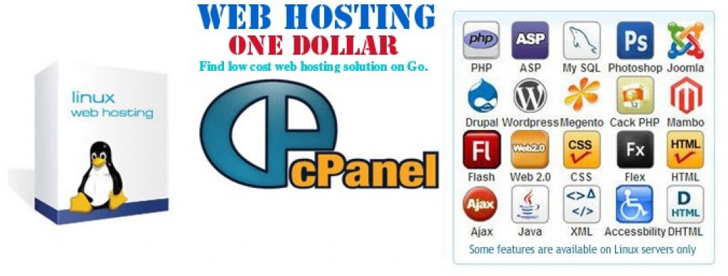 Economy Linux hosting with Cpanel Package