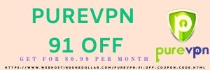 purevpn 91 off coupon