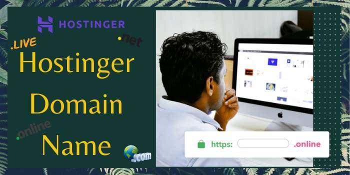 Hostinger Domain Name